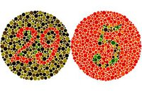 Mit Farbigen Filtern Gegen Rot Grün Blindheit Farbimpulse